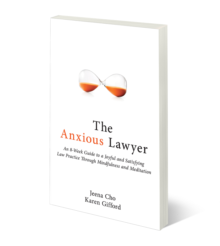 The-Anxious-Lawyer-3d-thinner